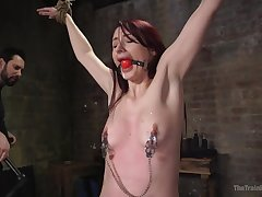 The Training be beneficial to O - Training Violet Monroe BDSM Slave T - violet monroe